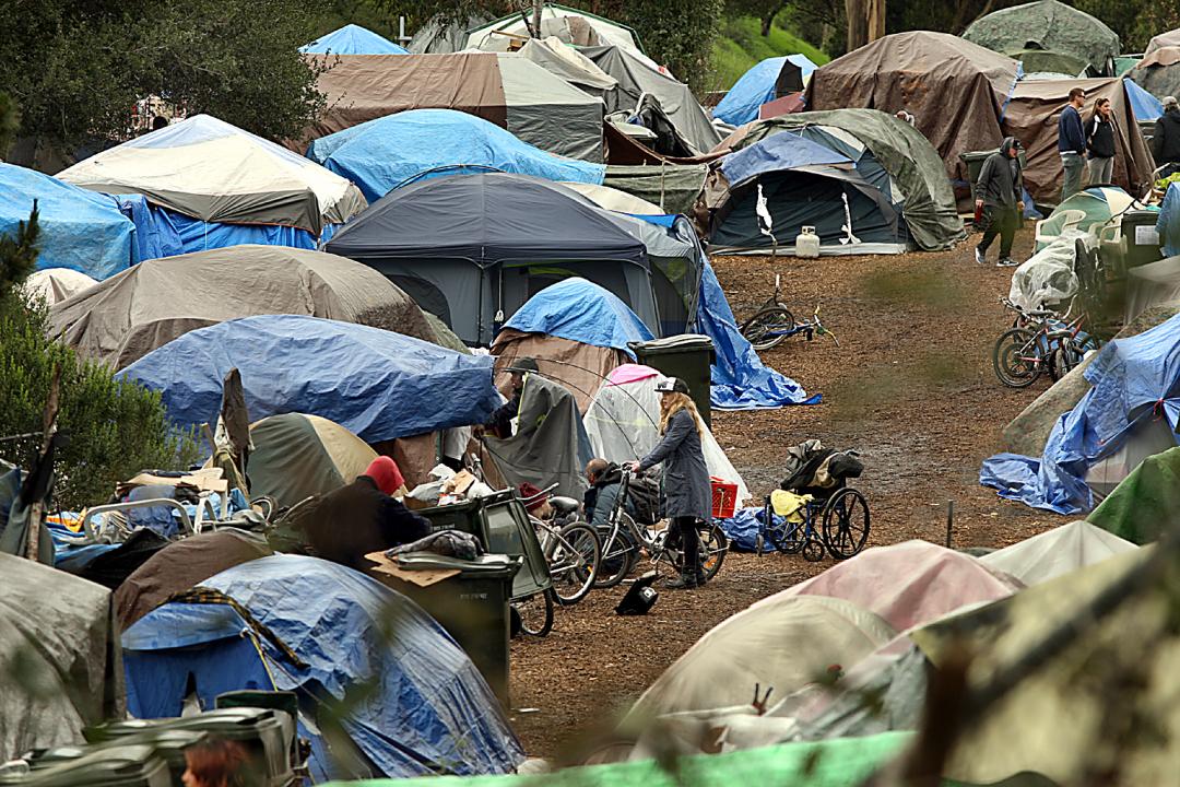 Ross Camp